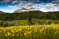Crested Butte 150717-4999