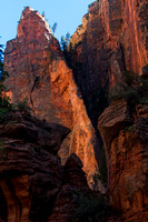 Zion Afternoon 140605-6347 7D
